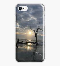 Bulls Head Island 2 iPhone Case/Skin
