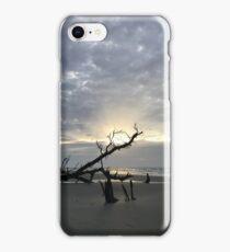 Bulls Head Island bullseye  iPhone Case/Skin