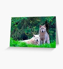 Two Arctic Wolves in the trees Greeting Card