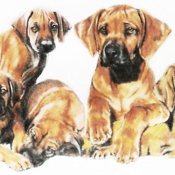 Rhodesian Ridgeback Puppies by BarbBarcikKeith