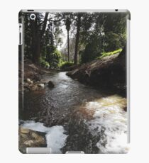 Time for an adventure iPad Case/Skin