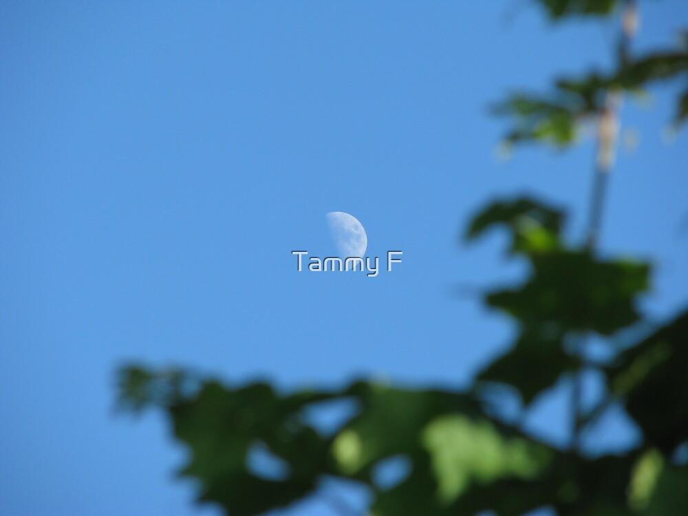 Daytime Moon by Tammy F