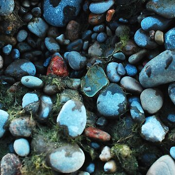 Beach Pebbles by DELAVALLE
