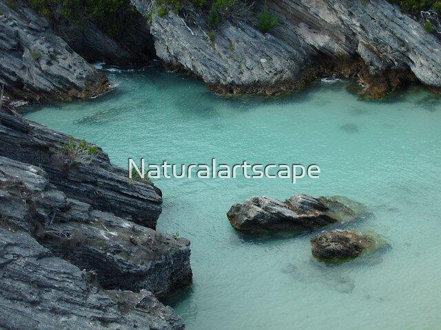 Jettyscape by Naturalartscape