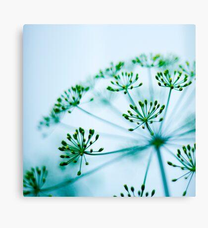 Gentle Whisper Canvas Print