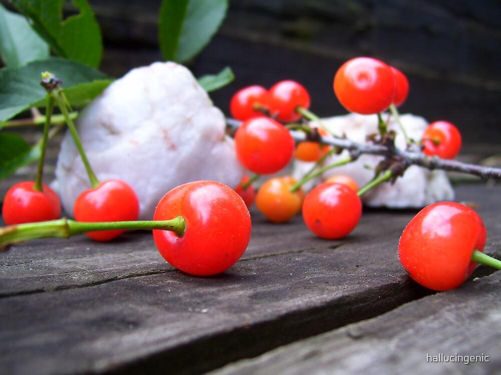 Cherry Still Life by hallucingenic