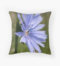 Admired Throw Pillow