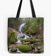 Coal Creek Falls Tote Bag