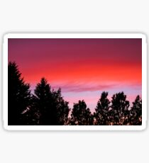 Sunset and trees Sticker
