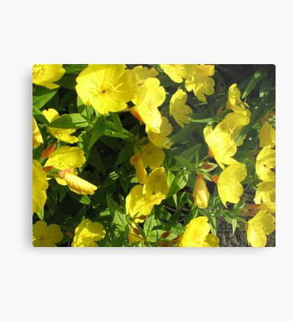 Yellow Flowers #1 Metal Print