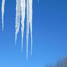 Dripping Icicles by Sandra Fortier