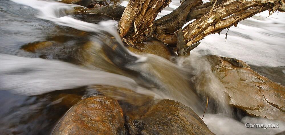 Tree Flowing by Gormaymax