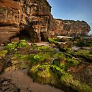 Caves Beach Moss by Ian English