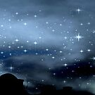 Clear Starry Night © by Dawn Becker