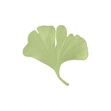 Ginko Leaf Spring Green by OpenArt