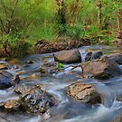 Cascades by Mark Baker