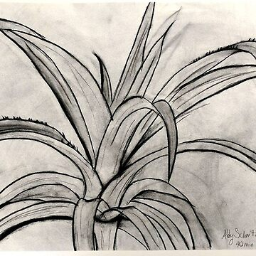 Charcoal Leaves by alschni