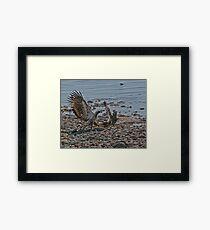Fight on the Beach Framed Print