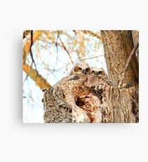 Two peas in a pod  Canvas Print