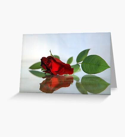 Tender Reflections Greeting Card