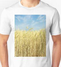 Ripe yellow wheat ears on field against blue sky. T-Shirt