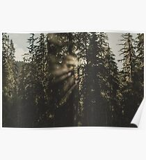 PNW Spotlight - Pacific Northwest Woods Poster