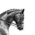 On The Bit - Dressage Series by Michelle Wrighton