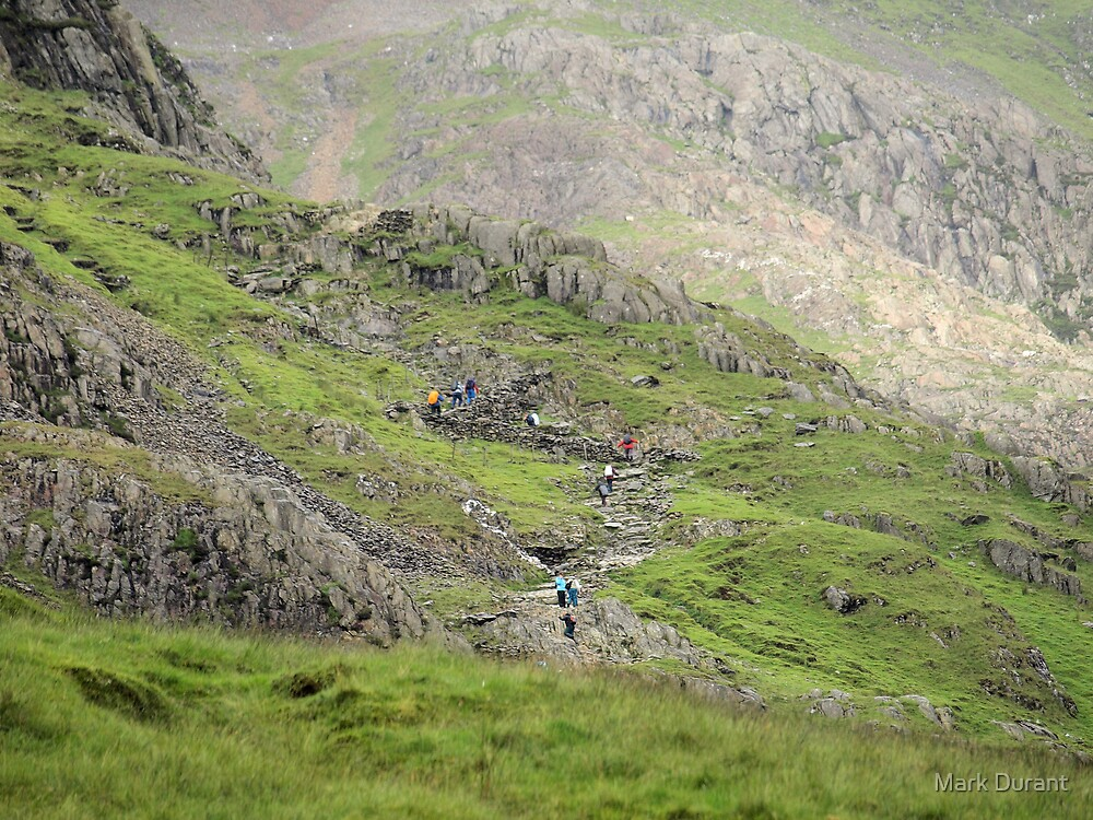 The Pyg Track by Mark Durant