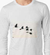 Common crane (Grus grus) Silhouetted at sun-set.  Photographed in the Hula Valley, Israel, in January. T-Shirt