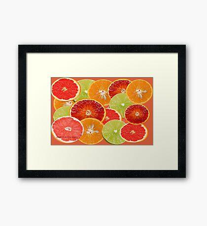 Citrus Fruits {544 Views} Framed Print