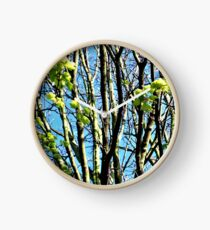 New leaves on branches Clock