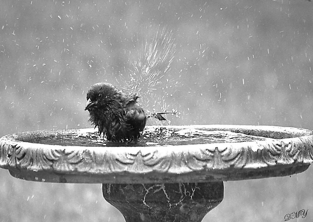 Baby Takes a Bath  by shadyuk