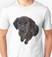 Puppies and Ladybugs T-Shirt