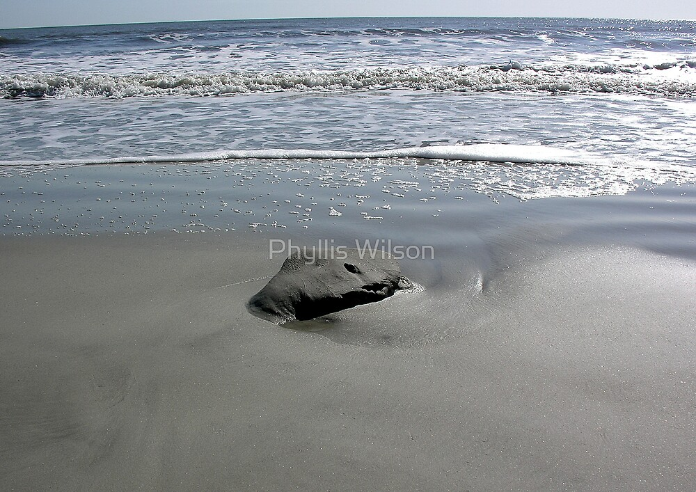 A Study on the Beach by Phyllis Wilson