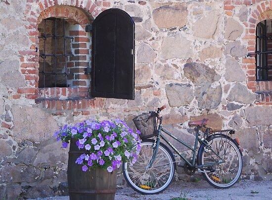 The Bike by julie08