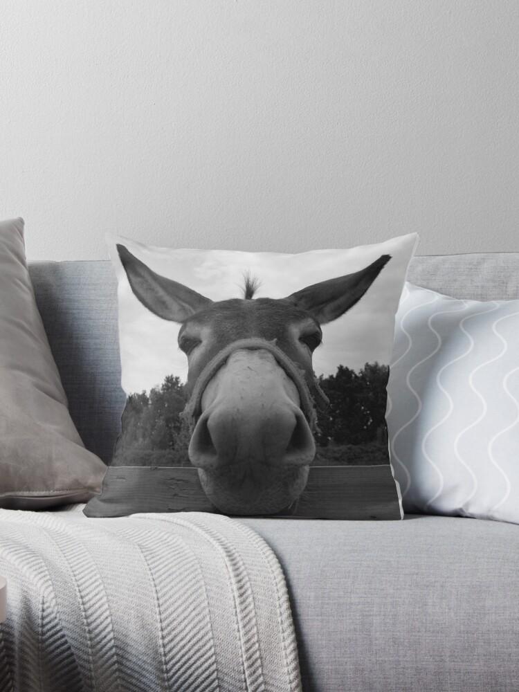 Donkey grey by badamg