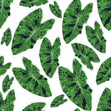 Tropical Green Leaf by MyArt23
