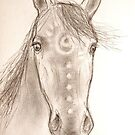 """Crazy Horse"" by karina73020"