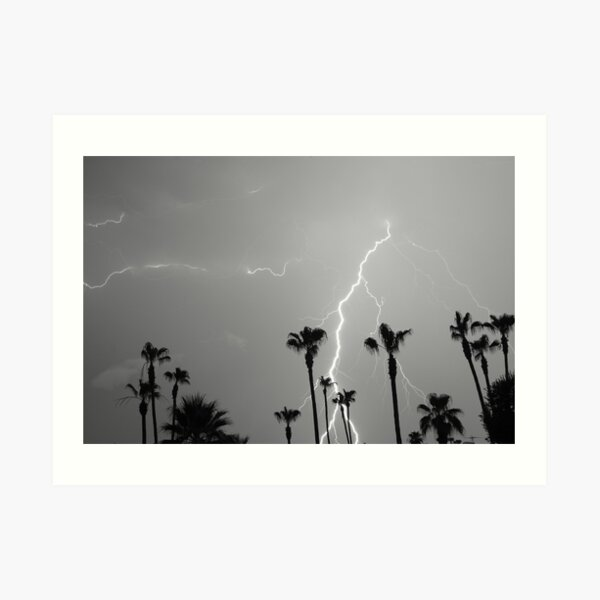 Black and white of a Lightning Storm and Tropical Palm Trees Art Print