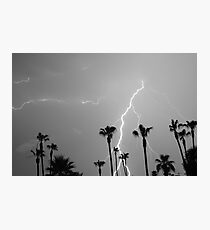 Black and white of a Lightning Storm and Tropical Palm Trees Photographic Print