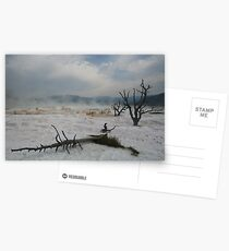 Yellowstone - Scenes of Another World Postcards