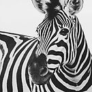 The Thoughtful Zebra by peggieprints
