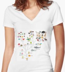 Evolution in biology, scheme evolution of animals isolated on white background. children's education, science. Evolution scale from unicellular organism to mammals. Women's Fitted V-Neck T-Shirt