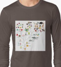 Evolution in biology, scheme evolution of animals isolated on white background. children's education, science. Evolution scale from unicellular organism to mammals. T-Shirt