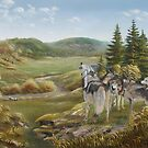 Wolves from Grandpa's Hills by Irene Clarke