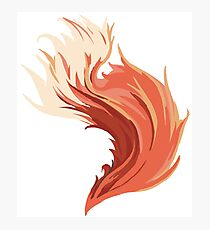 A Fox Tail Photographic Print