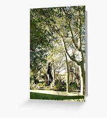 THE FEVER TREE - Acacia xanthophloea Greeting Card