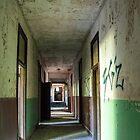 Down The Hall  by Paul Lubaczewski