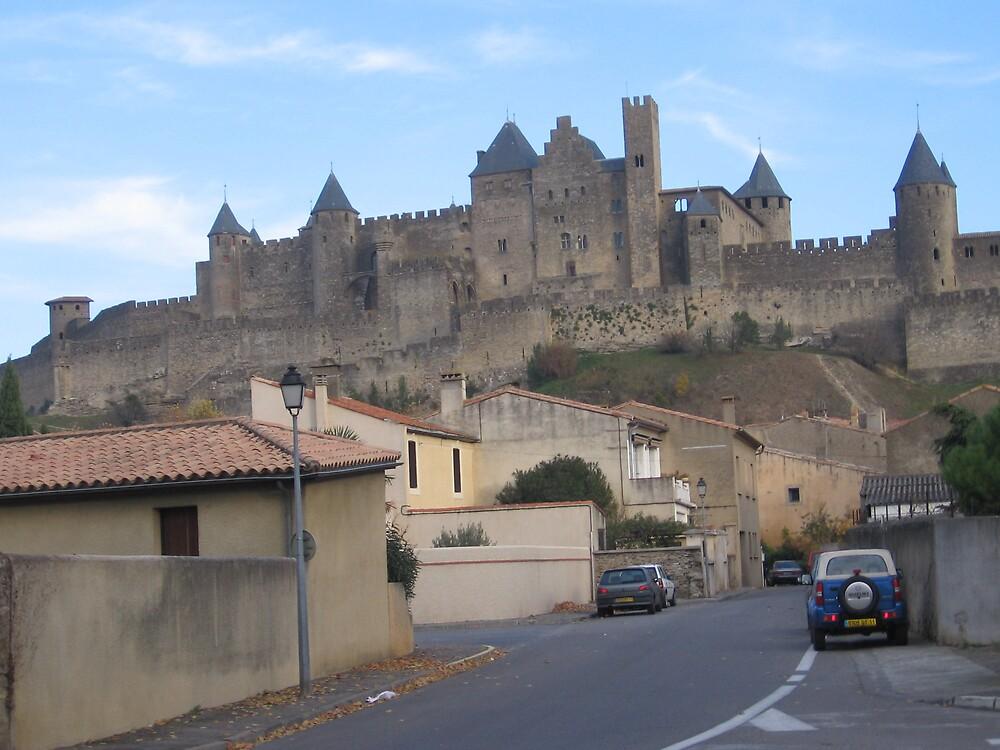 Le Chateau de Carcassonne by Dianne Rini
