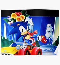 Sonic the (taken) Poster